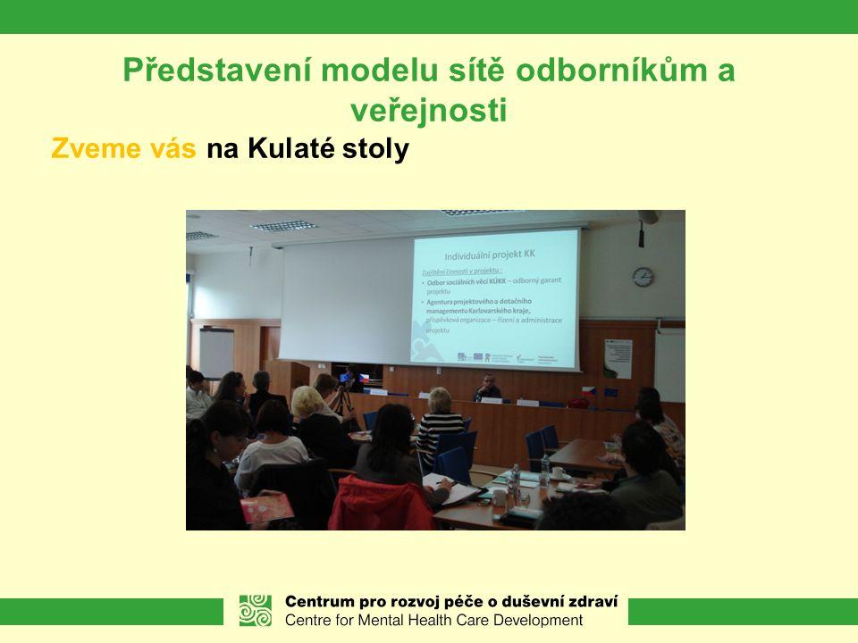Představení modelu sítě odborníkům a veřejnosti