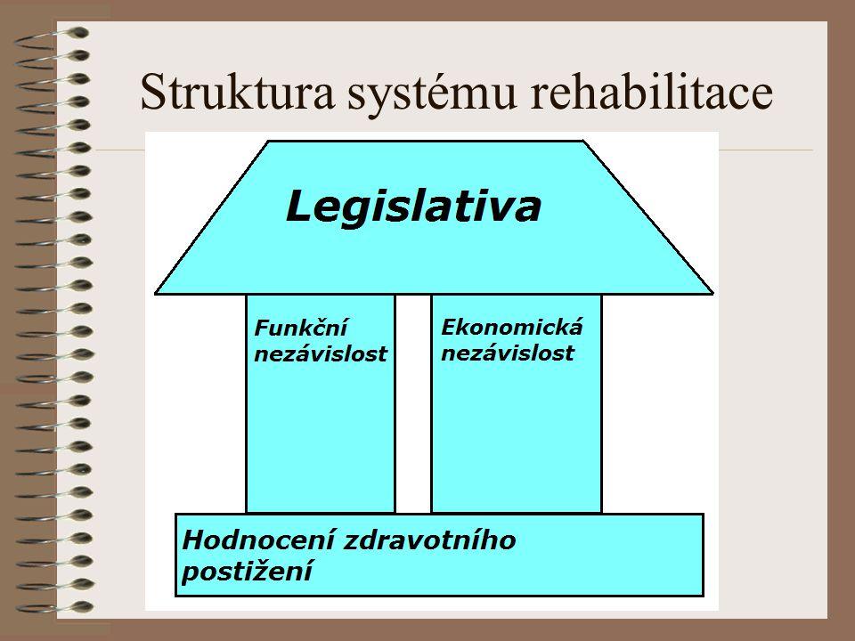 Struktura systému rehabilitace