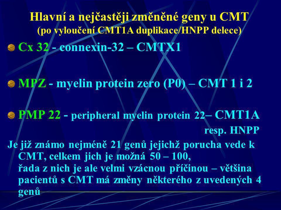 MPZ - myelin protein zero (P0) – CMT 1 i 2