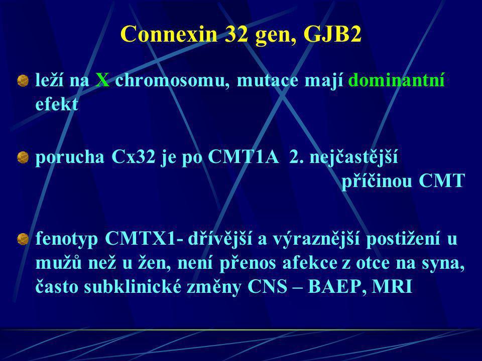Connexin 32 gen, GJB2 leží na X chromosomu, mutace mají dominantní efekt.