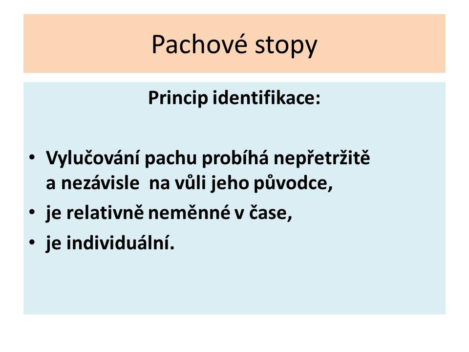 Princip identifikace: