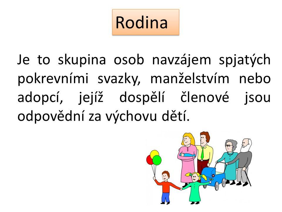 Rodina Je to skupina osob navzájem spjatých pokrevními svazky, manželstvím nebo adopcí, jejíž dospělí členové jsou odpovědní za výchovu dětí.