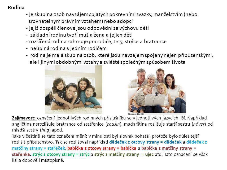 srovnatelným právním vztahem) nebo adopcí
