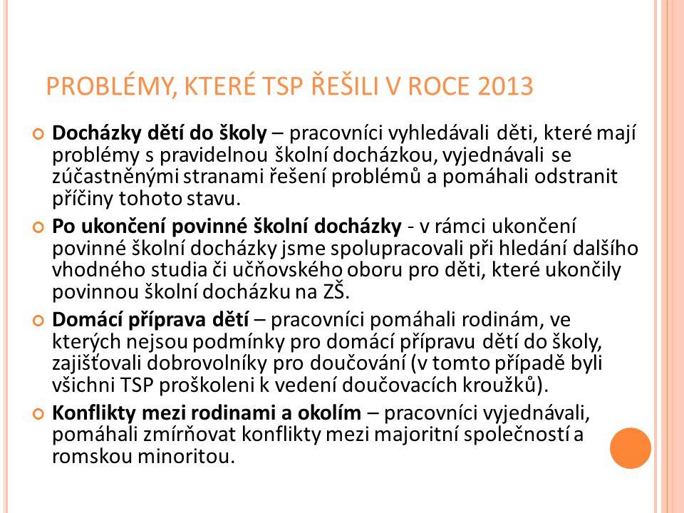 PROBLÉMY, KTERÉ TSP ŘEŠILI V ROCE 2013