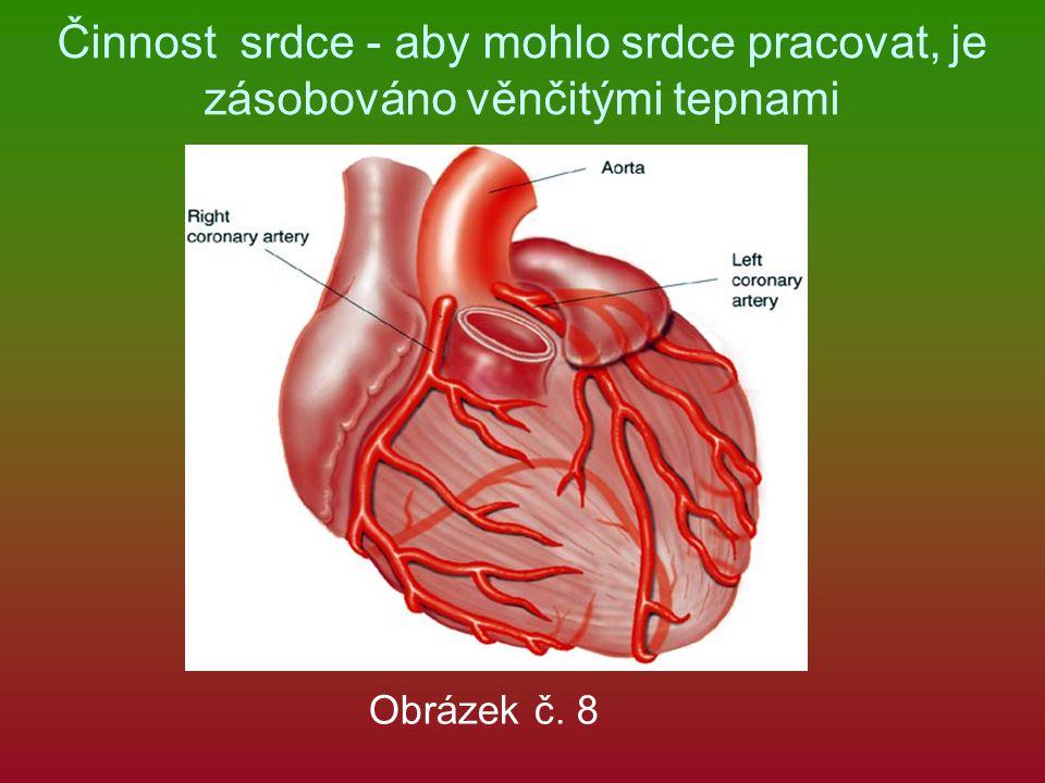 Činnost srdce - aby mohlo srdce pracovat, je zásobováno věnčitými tepnami
