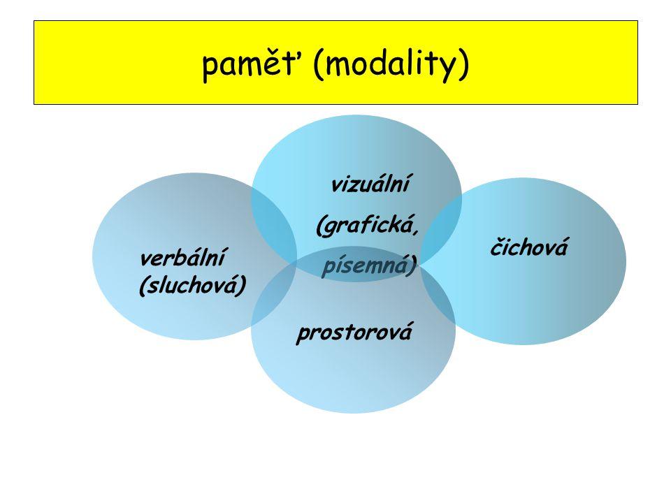 paměť (modality) vizuální (grafická, písemná) čichová verbální