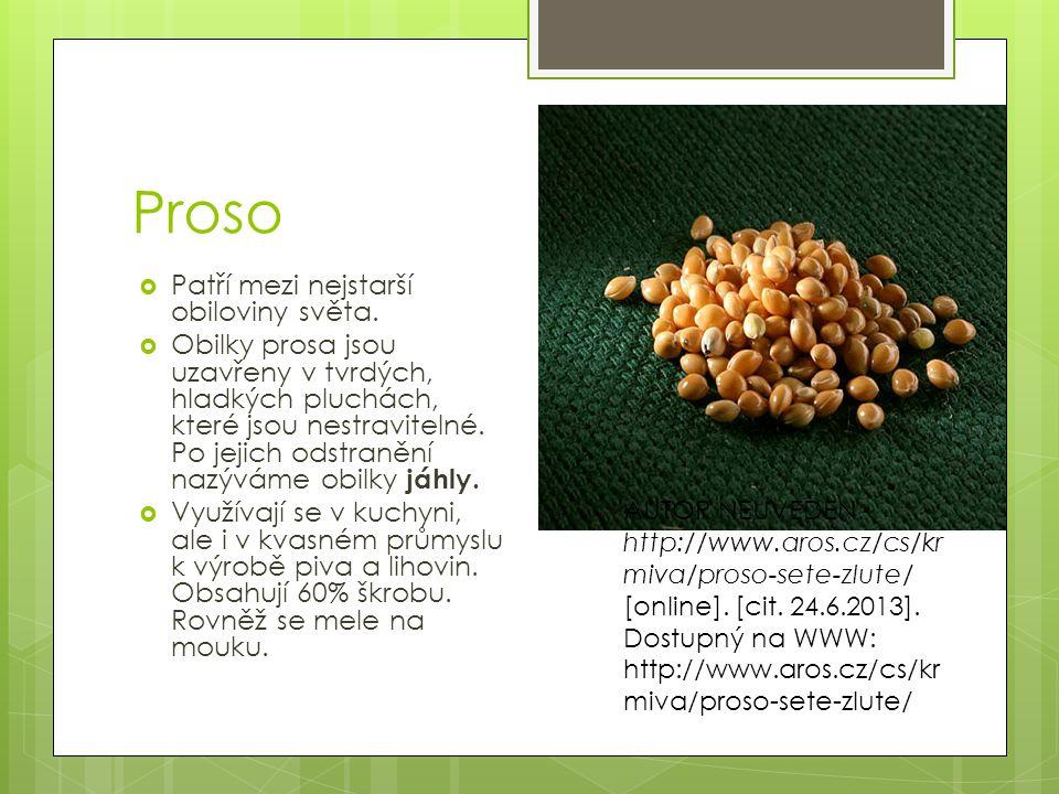 Proso Patří mezi nejstarší obiloviny světa.
