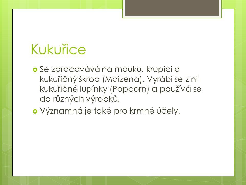 Kukuřice Se zpracovává na mouku, krupici a kukuřičný škrob (Maizena). Vyrábí se z ní kukuřičné lupínky (Popcorn) a používá se do různých výrobků.