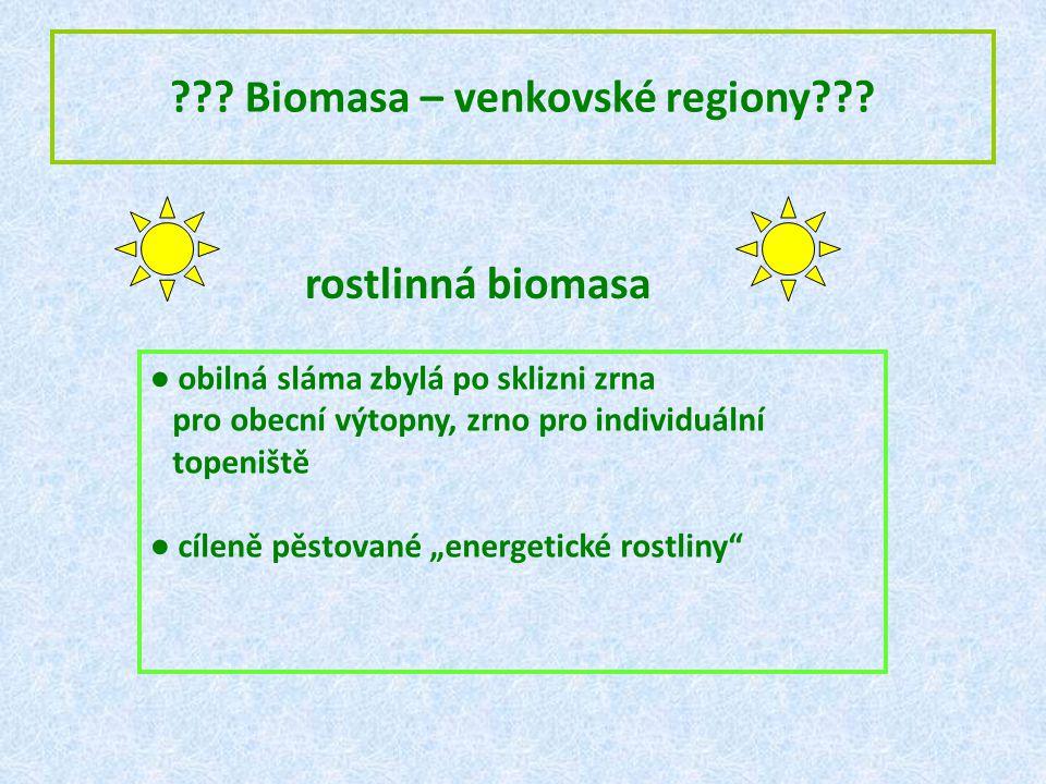 Biomasa – venkovské regiony