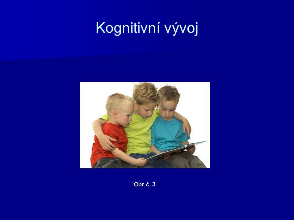 Kognitivní vývoj Obr. č. 3