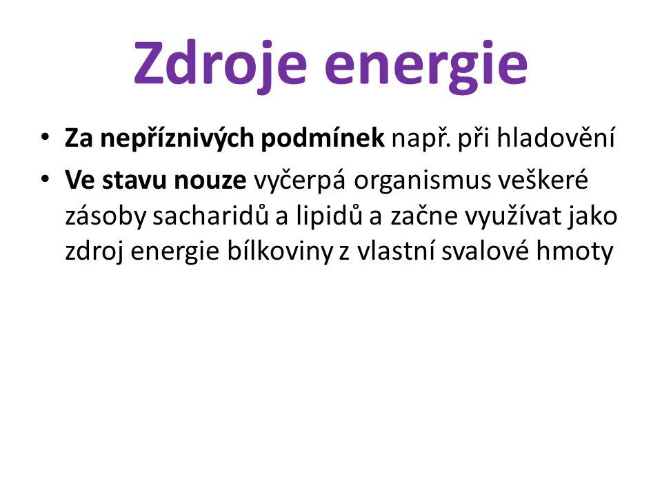 Zdroje energie Za nepříznivých podmínek např. při hladovění