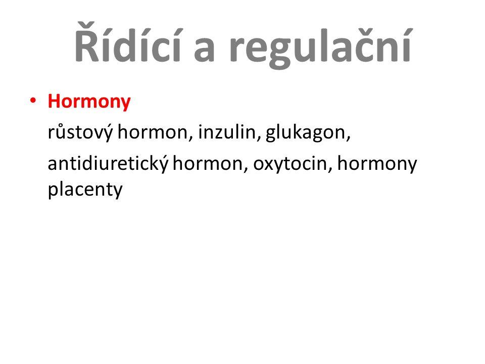 Řídící a regulační Hormony růstový hormon, inzulin, glukagon,