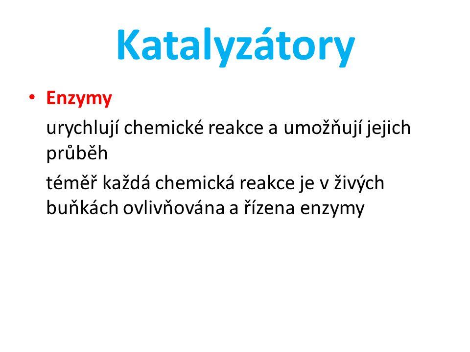 Katalyzátory Enzymy urychlují chemické reakce a umožňují jejich průběh