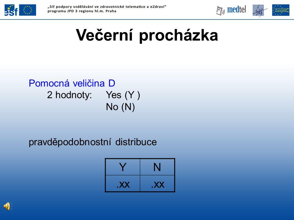 Večerní procházka Y N .xx Pomocná veličina D 2 hodnoty: Yes (Y )