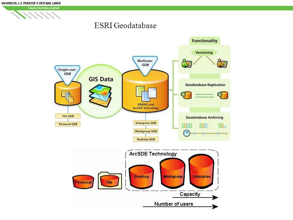 ESRI Geodatabase