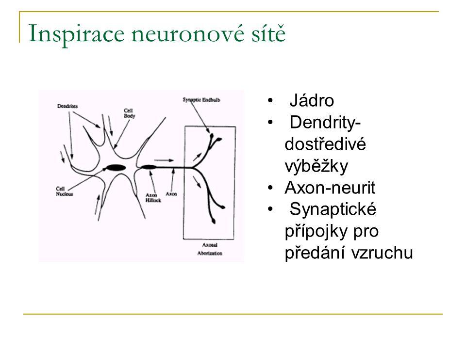 Inspirace neuronové sítě