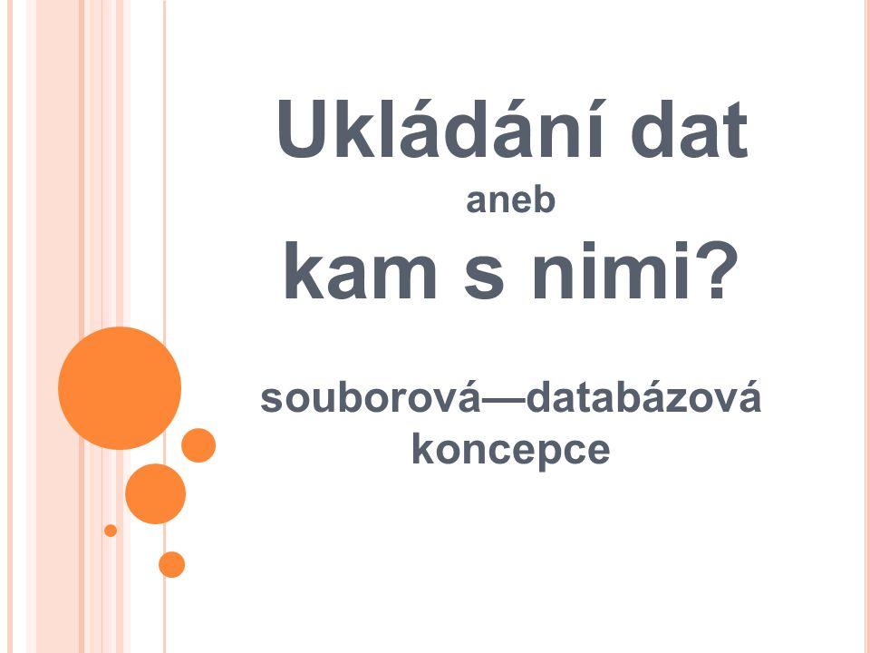 Ukládání dat aneb kam s nimi souborová—databázová koncepce