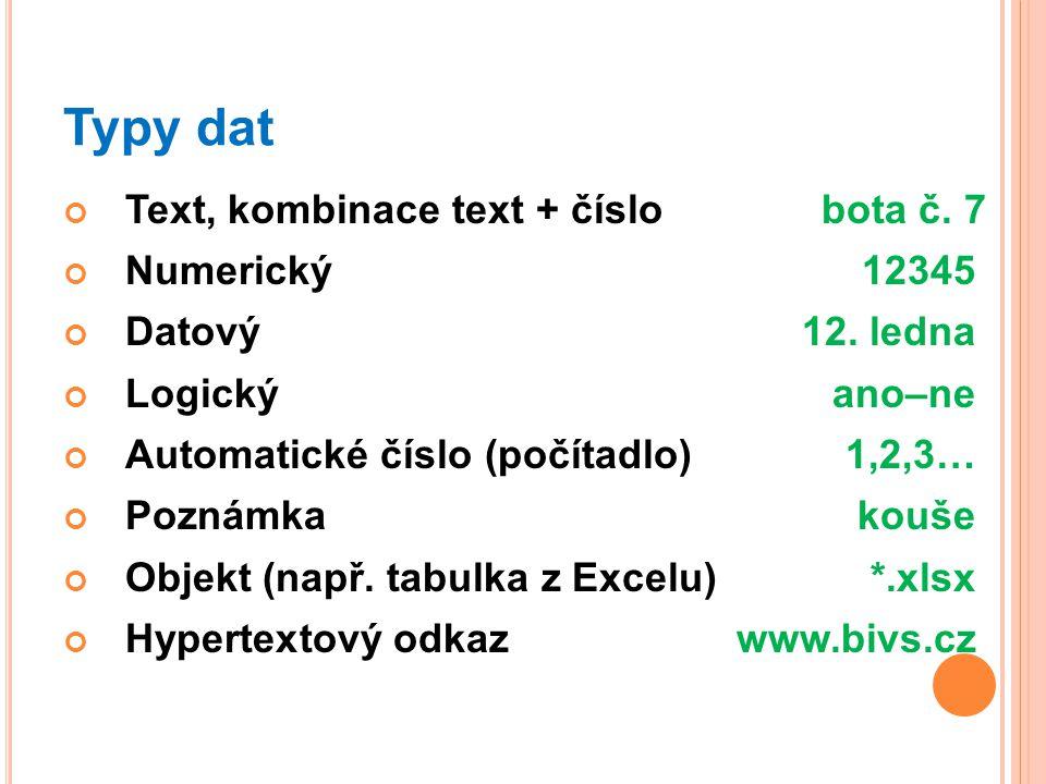 Typy dat Text, kombinace text + číslo bota č. 7 Numerický 12345