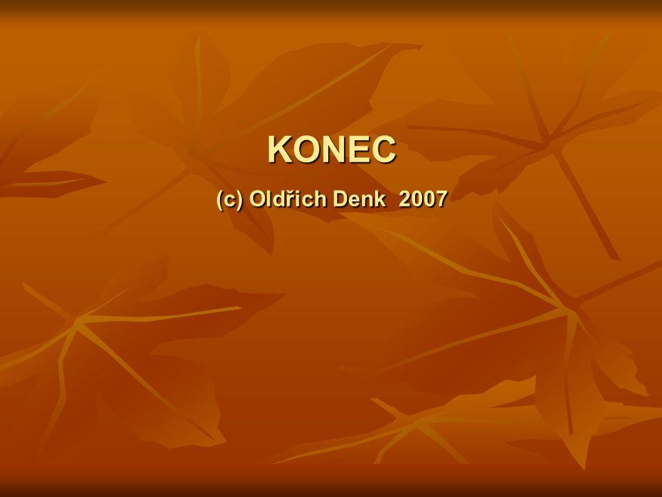KONEC (c) Oldřich Denk 2007