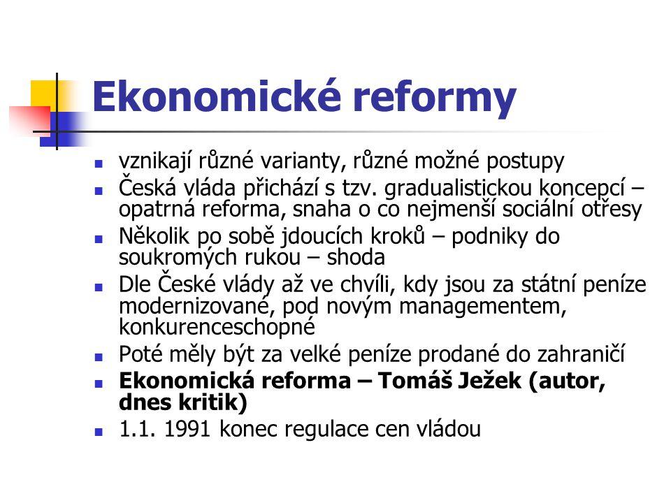 Ekonomické reformy vznikají různé varianty, různé možné postupy