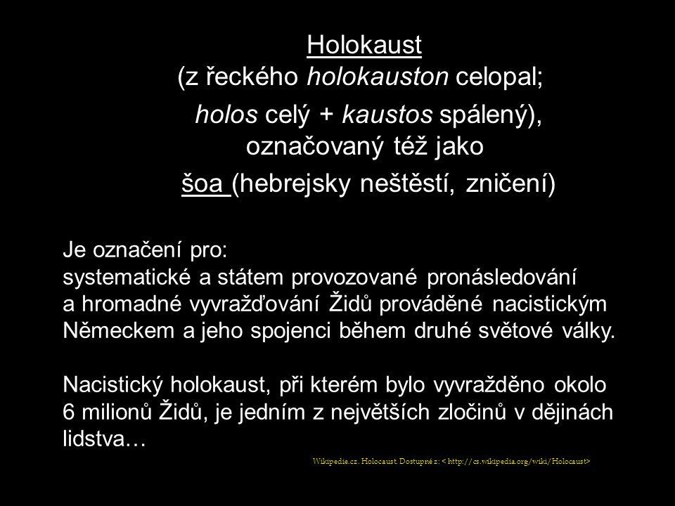 Holokaust (z řeckého holokauston celopal;