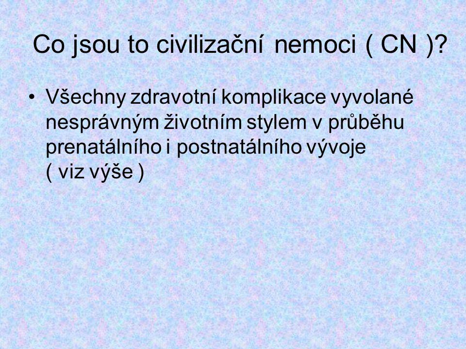 Co jsou to civilizační nemoci ( CN )