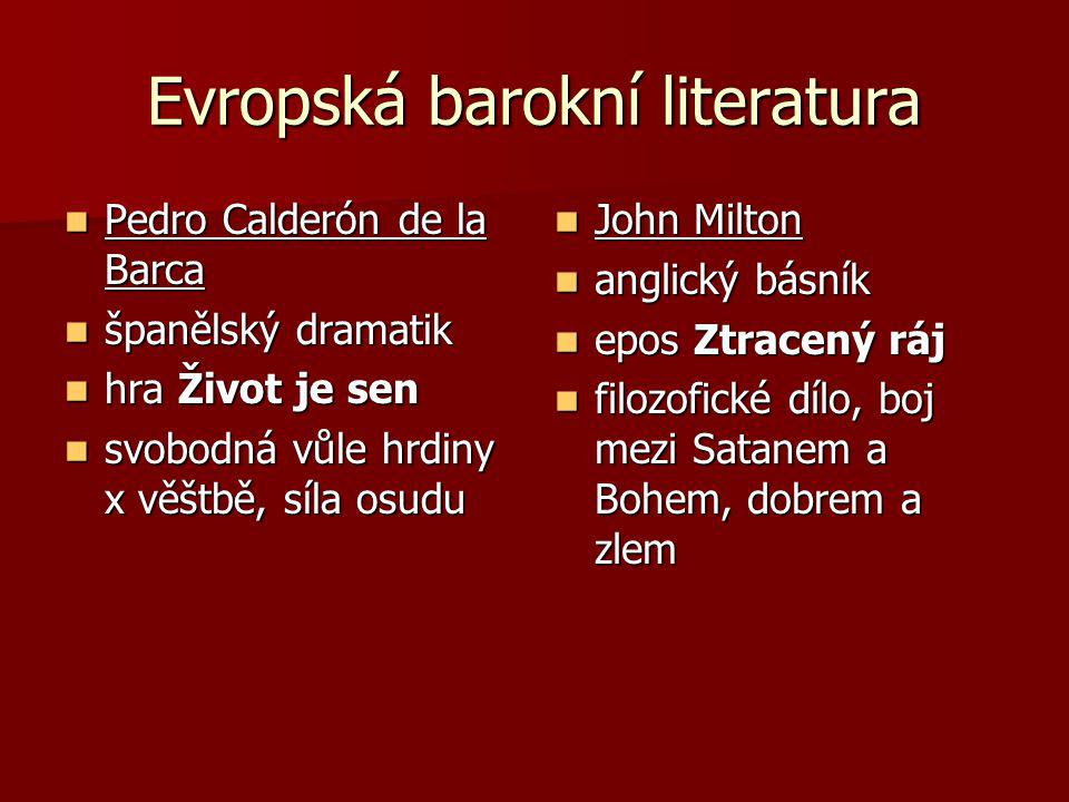 Evropská barokní literatura