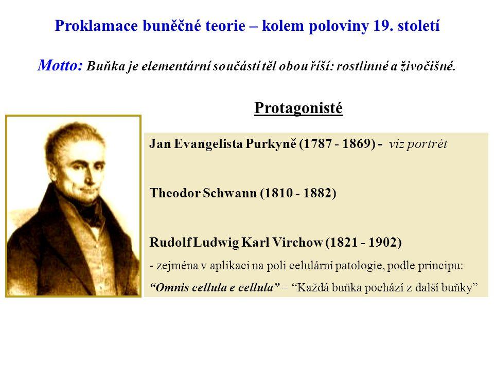 Proklamace buněčné teorie – kolem poloviny 19. století