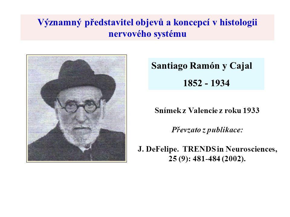 Významný představitel objevů a koncepcí v histologii nervového systému