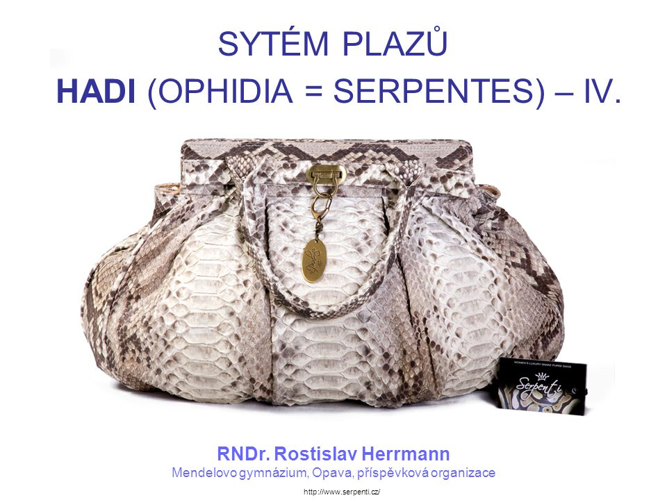 SYTÉM PLAZŮ HADI (OPHIDIA = SERPENTES) – IV.