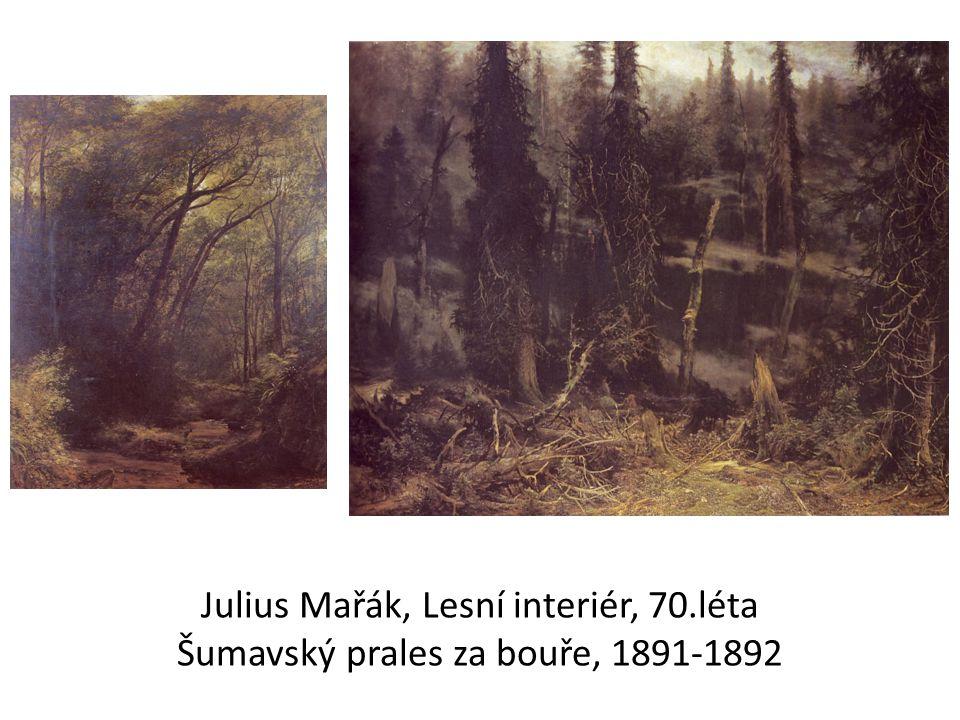 Julius Mařák, Lesní interiér, 70