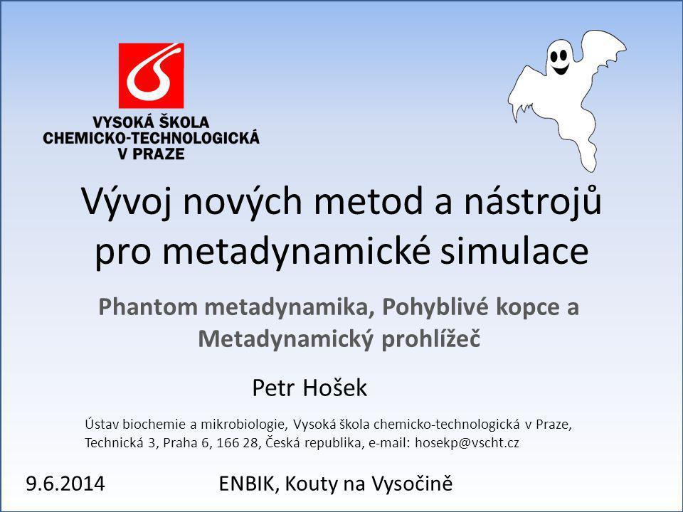 Vývoj nových metod a nástrojů pro metadynamické simulace