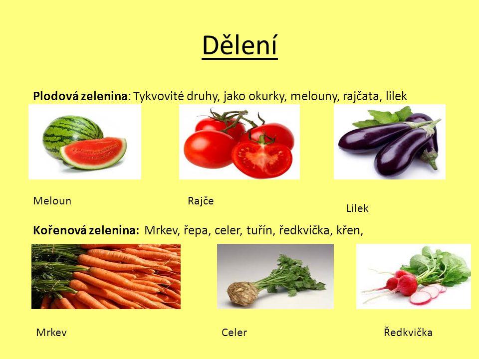 Dělení Plodová zelenina: Tykvovité druhy, jako okurky, melouny, rajčata, lilek Kořenová zelenina: Mrkev, řepa, celer, tuřín, ředkvička, křen,
