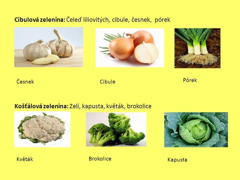 Cibulová zelenina: Čeleď liliovitých, cibule, česnek, pórek Košťálová zelenina: Zelí, kapusta, květák, brokolice