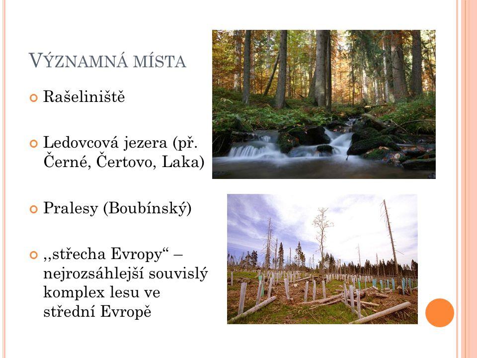 Významná místa Rašeliniště Ledovcová jezera (př. Černé, Čertovo, Laka)