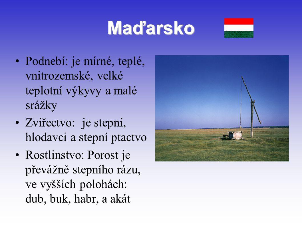Maďarsko Podnebí: je mírné, teplé, vnitrozemské, velké teplotní výkyvy a malé srážky. Zvířectvo: je stepní, hlodavci a stepní ptactvo.