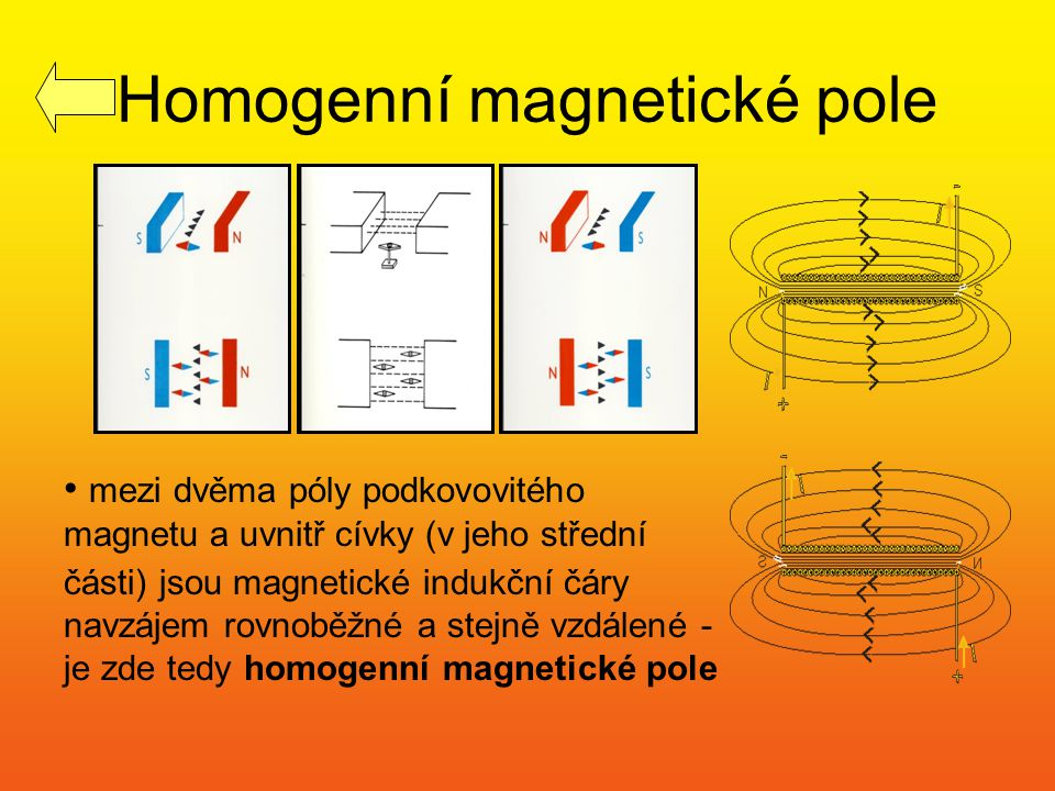 Homogenní magnetické pole