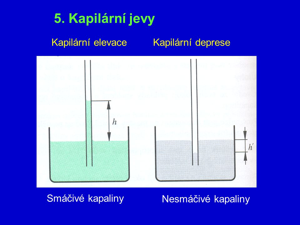 5. Kapilární jevy Kapilární elevace Kapilární deprese Smáčivé kapaliny