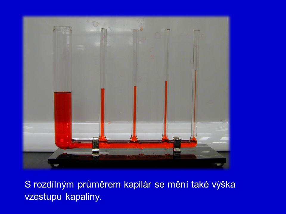 S rozdílným průměrem kapilár se mění také výška vzestupu kapaliny.