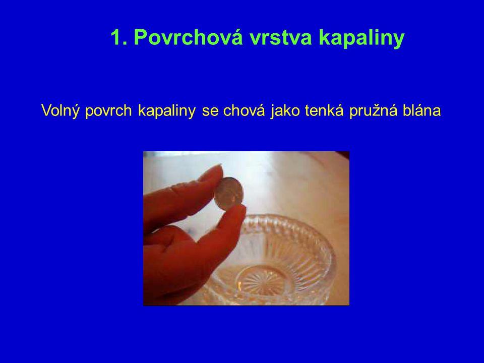 1. Povrchová vrstva kapaliny