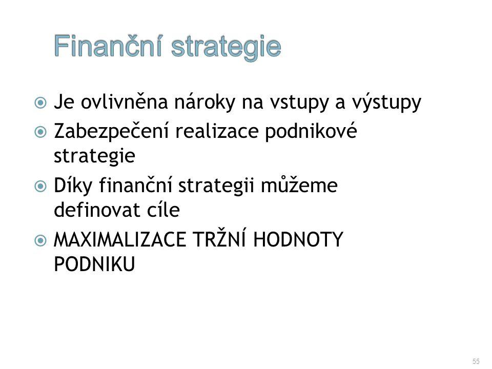 Finanční strategie Je ovlivněna nároky na vstupy a výstupy