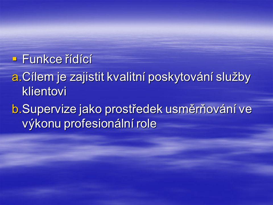 Funkce řídící Cílem je zajistit kvalitní poskytování služby klientovi.