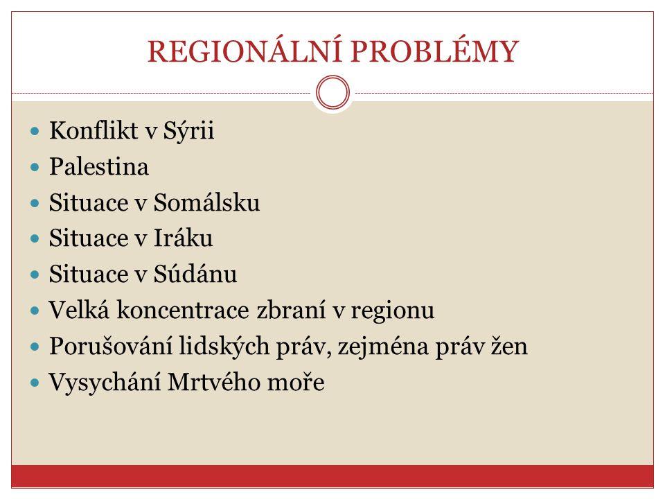 REGIONÁLNÍ PROBLÉMY Konflikt v Sýrii Palestina Situace v Somálsku