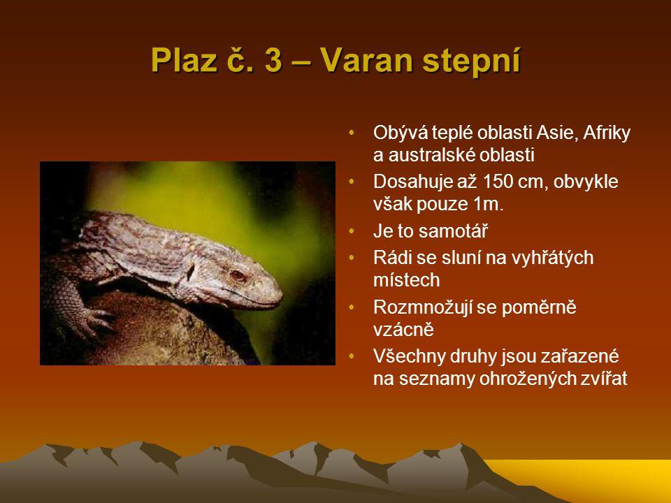 Plaz č. 3 – Varan stepní Obývá teplé oblasti Asie, Afriky a australské oblasti. Dosahuje až 150 cm, obvykle však pouze 1m.
