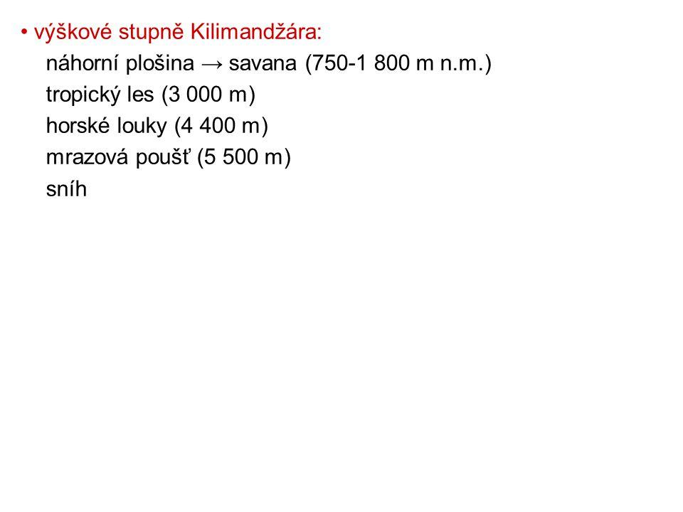 • výškové stupně Kilimandžára: