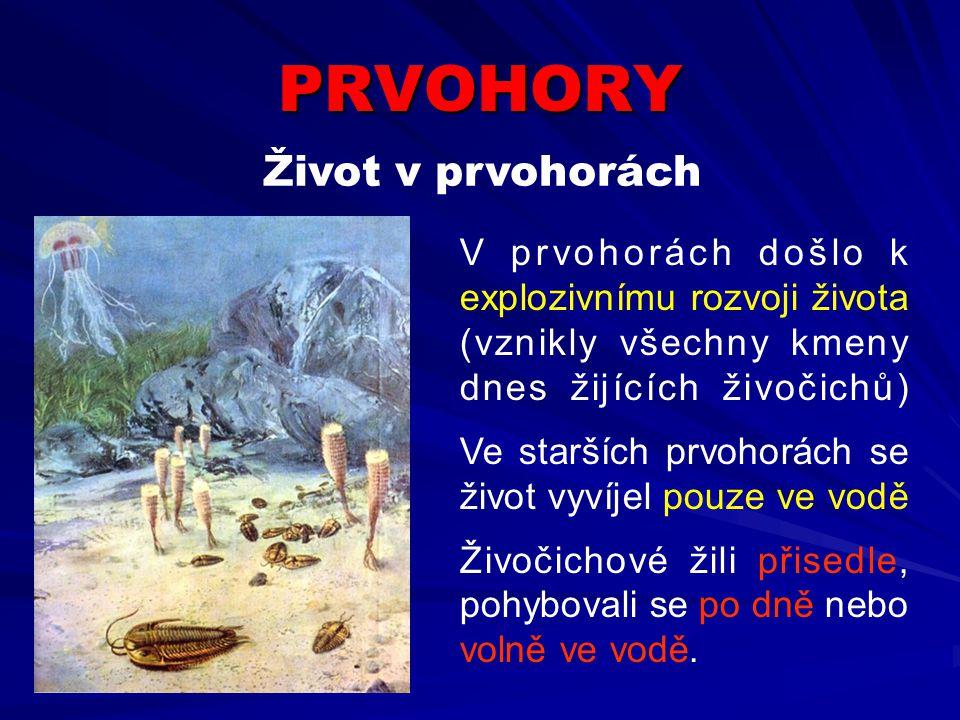 PRVOHORY Život v prvohorách