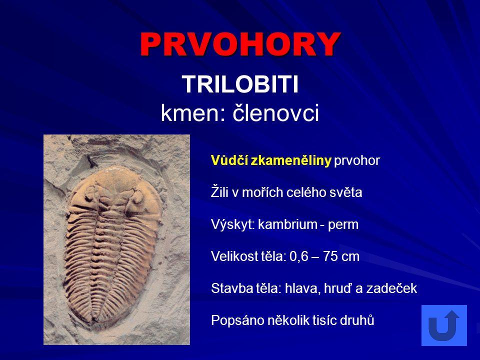 PRVOHORY TRILOBITI kmen: členovci Vůdčí zkameněliny prvohor