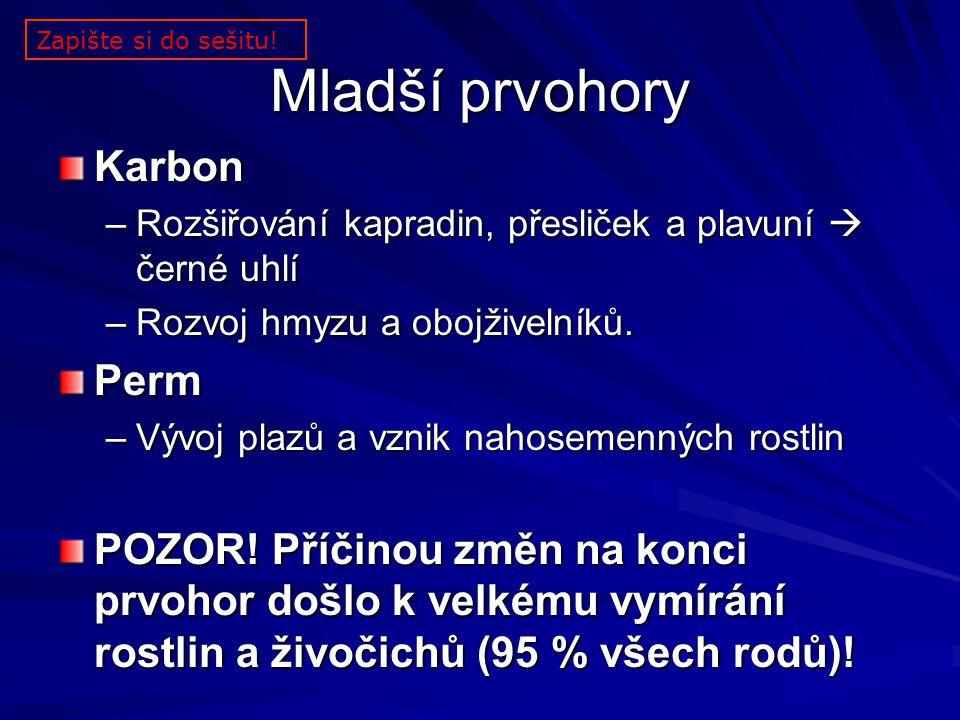 Mladší prvohory Karbon Perm
