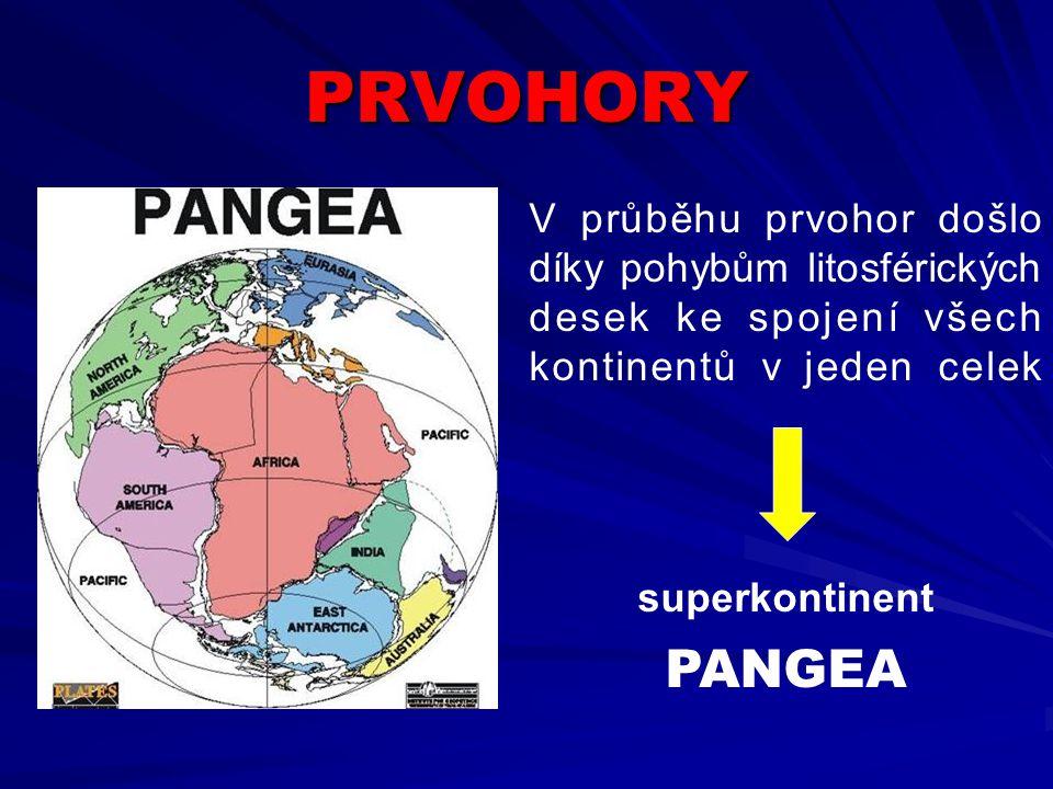 PRVOHORY V průběhu prvohor došlo díky pohybům litosférických desek ke spojení všech kontinentů v jeden celek.