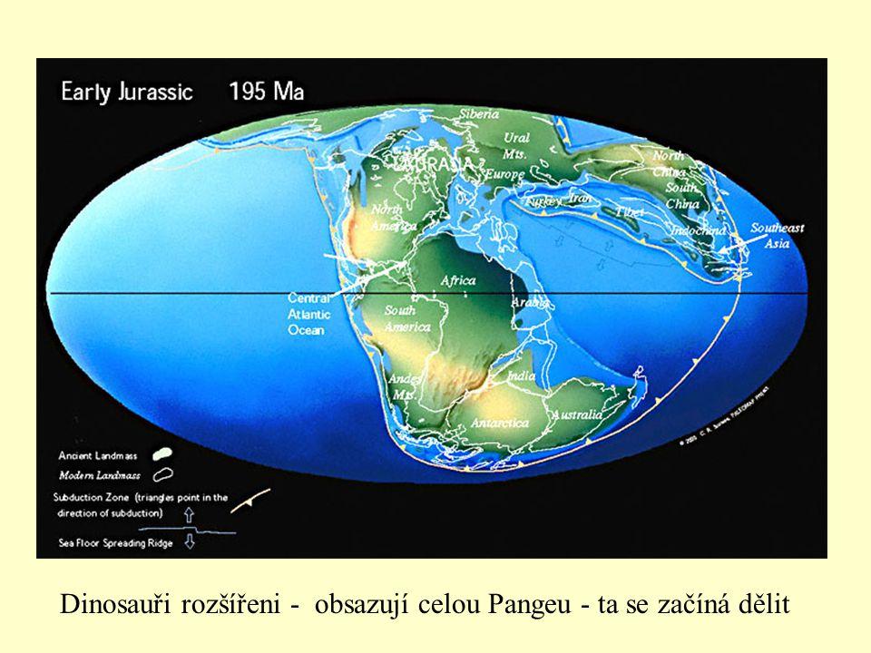 Dinosauři rozšířeni - obsazují celou Pangeu - ta se začíná dělit